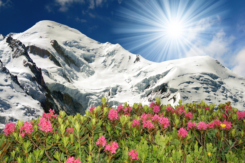 Ferienwohnung Résidence Androsace 42 (2465121), Argentière, Hochsavoyen, Rhône-Alpen, Frankreich, Bild 22