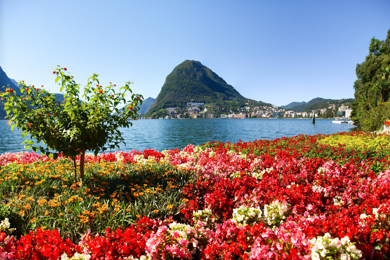 Ferienwohnung Laguna di Lugano (2464693), Pazzallo, Lago di Lugano (CH), Tessin, Schweiz, Bild 26