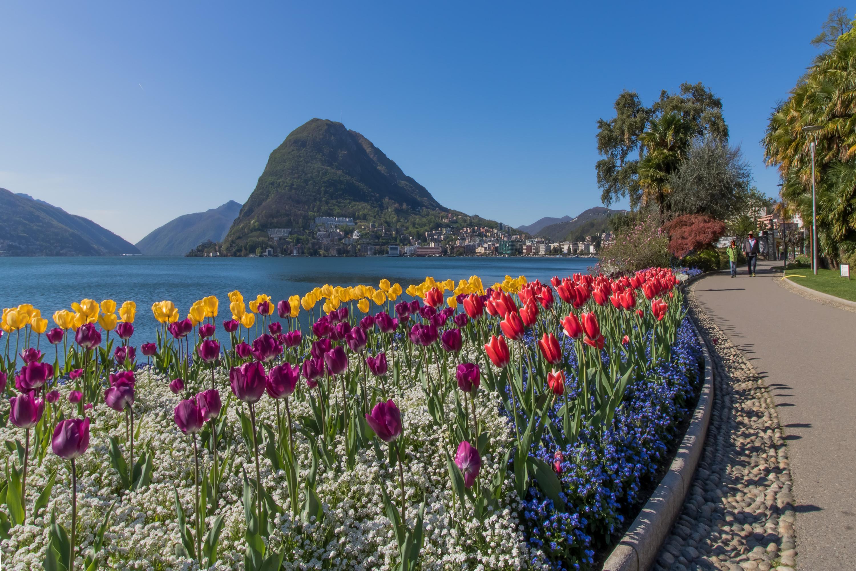 Ferienwohnung Laguna di Lugano (2464693), Pazzallo, Lago di Lugano (CH), Tessin, Schweiz, Bild 28
