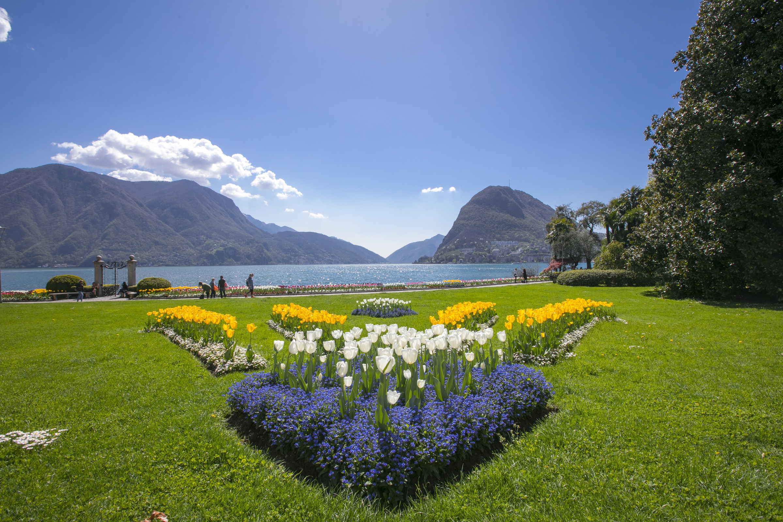 Ferienwohnung Pool House (2470935), Lugano, Lago di Lugano (CH), Tessin, Schweiz, Bild 13