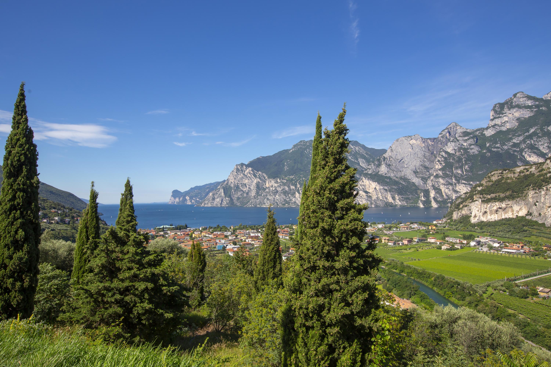 Ferienwohnung Appartamento Villa Daniel (2807077), Torbole, Gardasee, Trentino-Südtirol, Italien, Bild 21